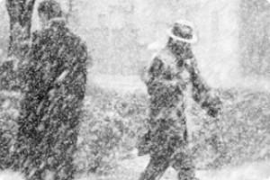 Общественная комиссия по «снежному плену» Одессы и ехидный пост Сергея Дубенко