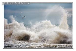 Декабрь 2012: зимний шторм в Одессе. Фоторепортаж