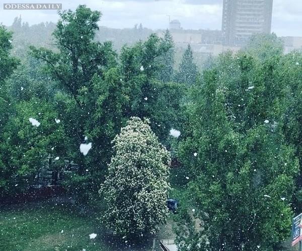 Укргидрометцентр объяснил, почему в Украине в мае выпал снег