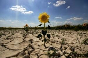 Откровения крымчанки: у нас жажда, «турысты» и дикие цены
