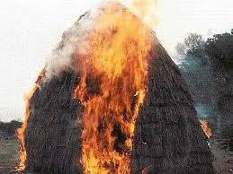 Одесская область: сгорело 5 тонн сена