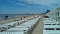 Коблево море — все убирается и благоутраивается