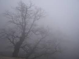 В ближайшие 1-2 часа по Одессе и области ожидается туман