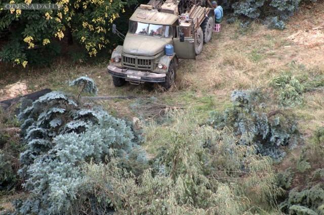 Более 200 деревьев вырубили на Гагаринском плато