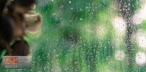 В Одесской области продолжится непогода, а температура опустится до +5