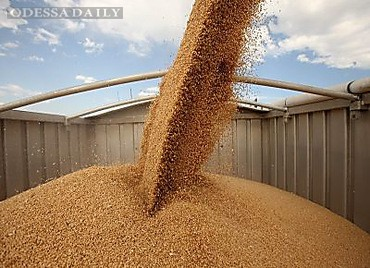 Налоговики пресекли незаконный вывоз около 400 тонн зерна из одесского порта